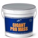 Gigant Pro Mass 5kg