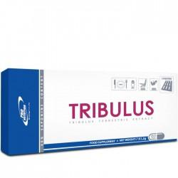 Tribulus 60 capsule